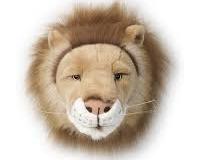 Bibib - Lion