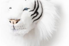 Bibib - tigre blanc
